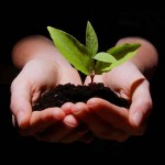 6 Practical Strategies For Personal Growth